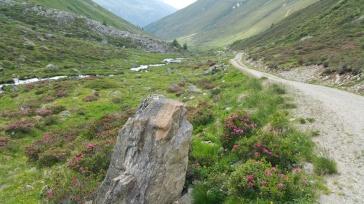 herrliche Trail Running-Passagen...