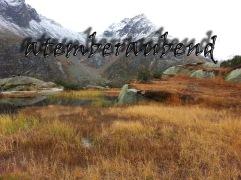 ...Richtung Bergseehütte, Hochmoor im Herbst...
