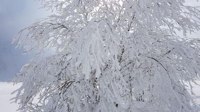...Winterzauber...
